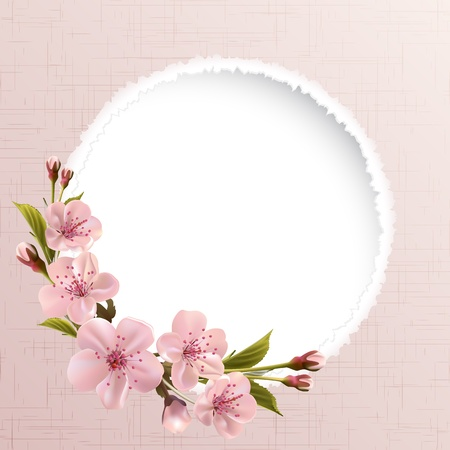 Spring header with pink cherry flowers, buds and copy space   Vector