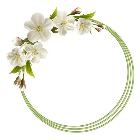 꽃이 만발한: 하얀 벚꽃 꽃, 꽃 봉오리 및 복사 공간 벡터 일러스트와 함께 봄 헤더