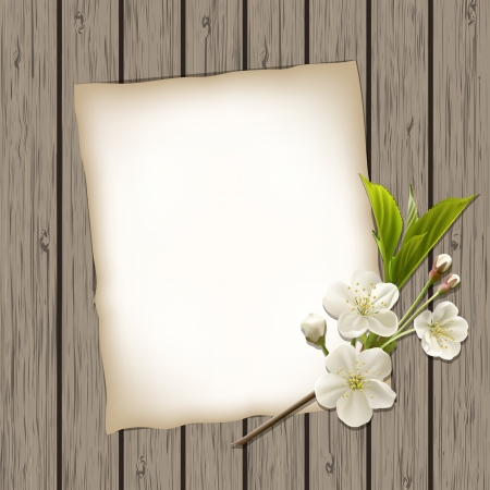 Blank paper with blossoming cherry branch on wooden background illustration Vector