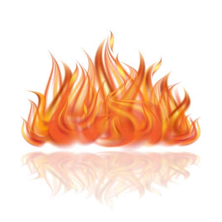 Fire on white background illustration Vector