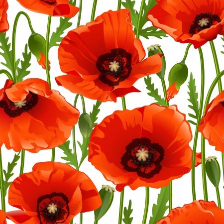 Poppy seamless pattern. Vector illustration Vector