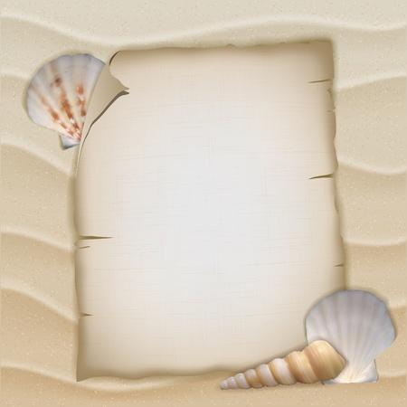 Shells and blank paper sheet. Vector illustration Vector