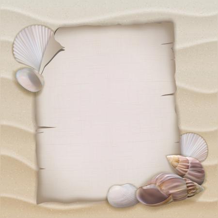 シェルと空白の紙のシート。ベクトル イラスト  イラスト・ベクター素材
