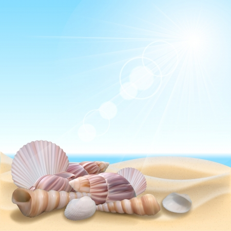 sunny beach: Shell on the beach. Summer holidays vector illustration