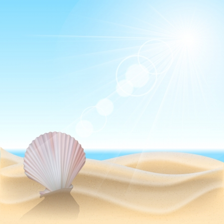 cockleshells: Shell on the beach. Summer holidays vector illustration