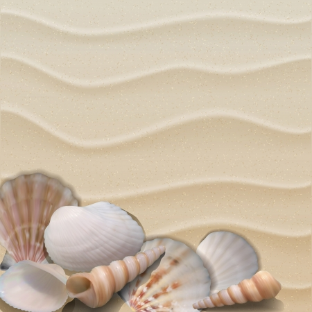Marine background with seashells on sand. Vector illustration Ilustracja