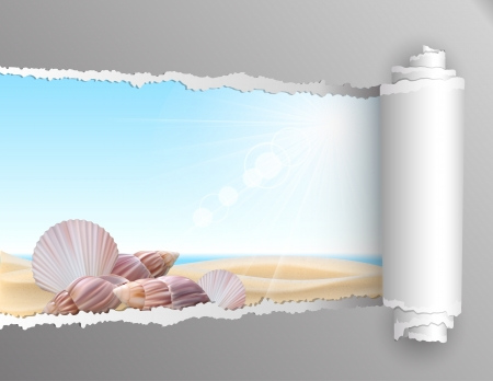 coastlines: The window in the summer. Torn paper with opening showing summer background with seashell on the beach. Vector illustration
