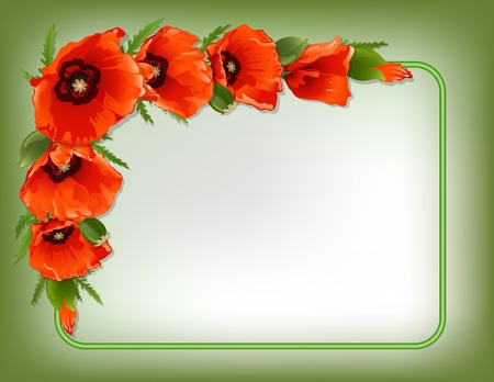 Red poppies floral frame with green border, vector illustration Vector