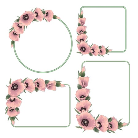 herbage: Set of floral frame with pink poppies. Vector background