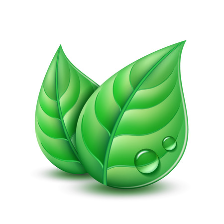 Ecology concept icon with green leaves. Vector illustration