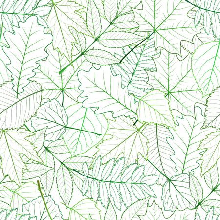 chokeberry: Seamless with green spring leaves. vector illustration Illustration