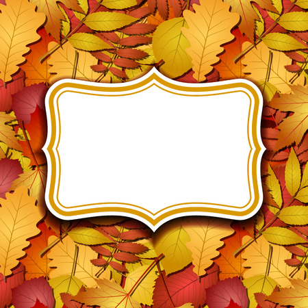 aronia: Frame labels on background with red and yellow autumn leaves.