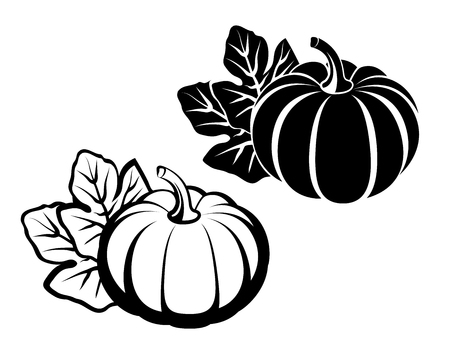 Pumpkins with leaves. Black silhouette on white background. Vector illustration