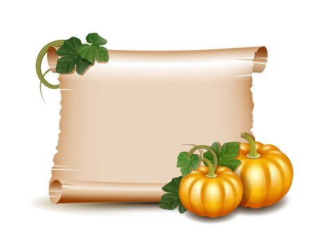 giving: Thanksgiving banner, card with empty paper scroll and pumpkins with leaves. Blank scroll of parchment wallpaper, background. Poster or brochure for Thanksgiving party. Vector illustration.