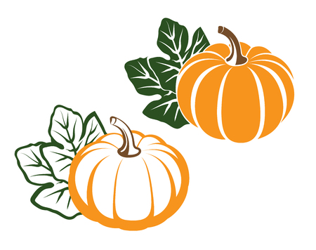 large pumpkin: Pumpkins with leaves. silhouette on white background. Vector illustration