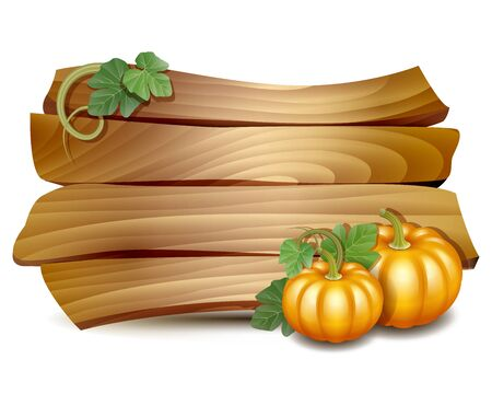thanks giving: Thanksgiving card with wooden banner and pumpkins with leaves. Poster or brochure for Thanksgiving party. Vector illustration.