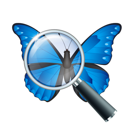 Magnifying glass and butterfly, education concept. Scientific biology, study nature, vector illustration Illustration