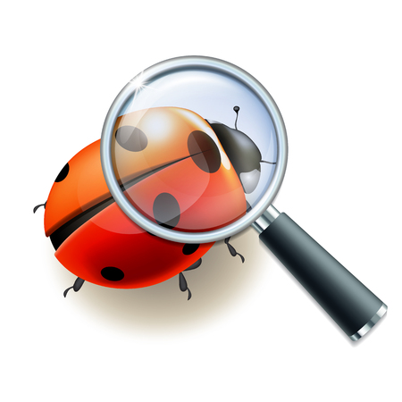 Magnifying glass and Ladybird, education concept. Scientific biology, study nature, vector illustration