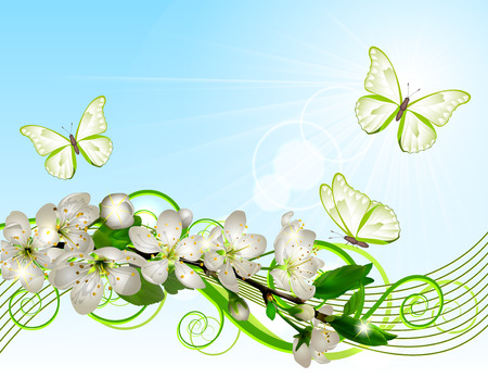 Blossoming cherry branch with white flowers Illustration
