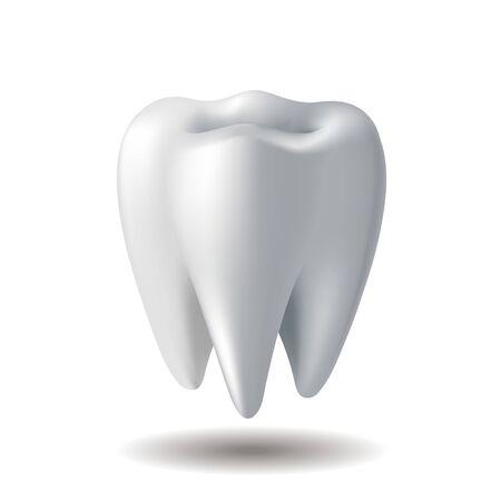 Dente bianco realistico isolato su sfondo bianco Vettoriali
