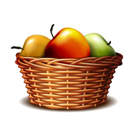 Red and green ripe apples in the basket. 向量圖像