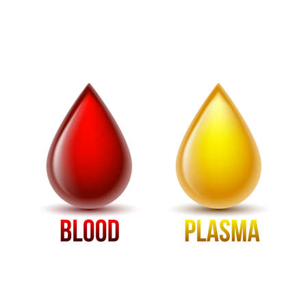 Drop of blood and drop of blood plasma. Blood components. 矢量图像