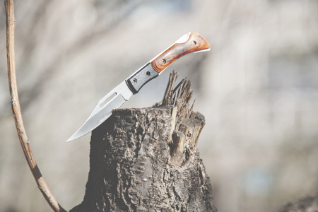 sharp pocket knife on the log