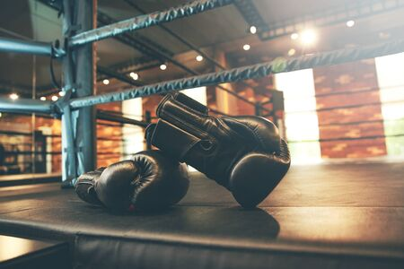 the two glove in the  gym background Stok Fotoğraf
