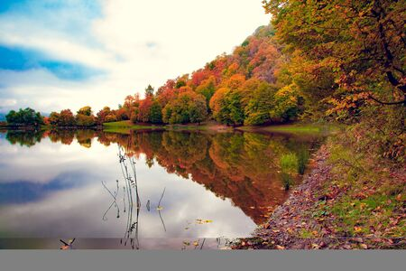 beautiful and colorful autumn trees with lake Stok Fotoğraf