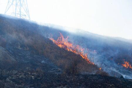 Flames of Fire in a summer field