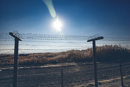 barbed wire and field under sky Imagens