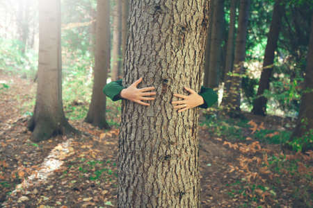 woman hand in tree in nature background