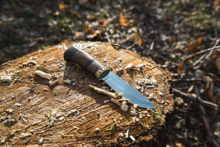 knife on wood in the garden background