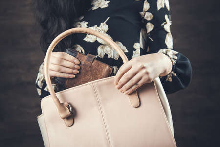woman hand bag with wallet on the dark background