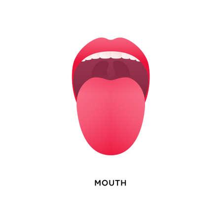Human organ collection. Vector flat modern anatomical icon color illustration. Tongue with lips. Mouth tasty sense symbol. Vectores