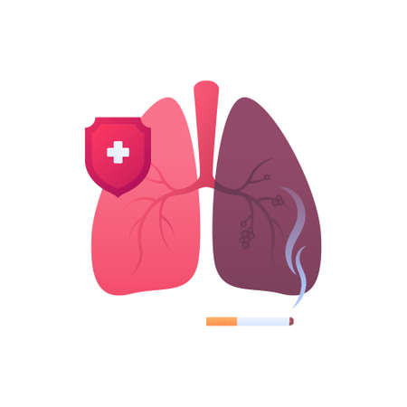 No smoking and lung disease concept. Vector flat medical illustration. Human organ and red shield protection symbol. Cigarette with smoke sign. Color icon. Design element for healthcare.  イラスト・ベクター素材
