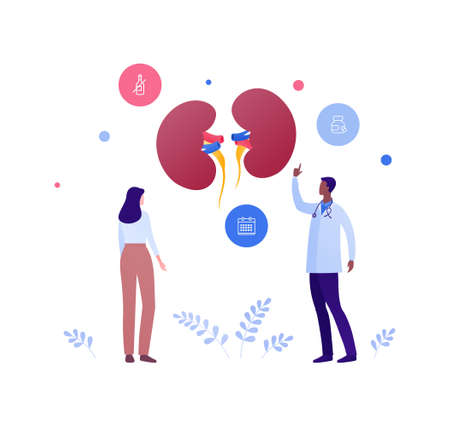 Nephrology disease treatment and healthcare checkup concept. Vector flat medical people illustration. Human kidneys sign. Male doctor and female patient character. Design for health care.