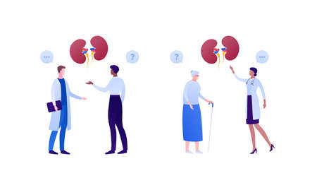 Nephrology disease treatment and healthcare checkup concept. Vector flat medical people illustration. Human kidneys sign. Male and female doctor and patient character. Design for health care.  イラスト・ベクター素材