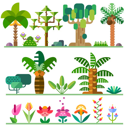 Tropical plants. Different types of trees flowers bushes. Vector flat illustrations