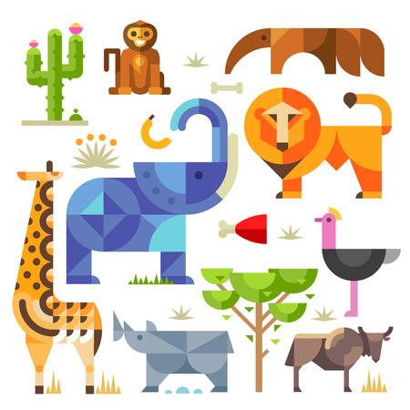 dibujo: Animales de África planos geométricos y plantas, incluso cactus hiena león elefante jirafa mono rinoceronte avestruz oso hormiguero Vectores
