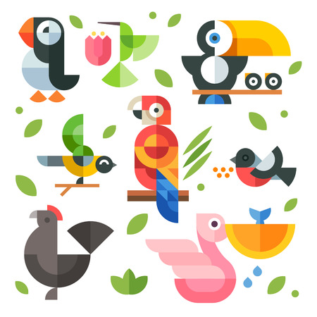 Color vector flat icon set and illustrations magic birds and chicks: toucan sitting on a branch pelican fishing hummingbird parrot chicken puffin bird bullfinch