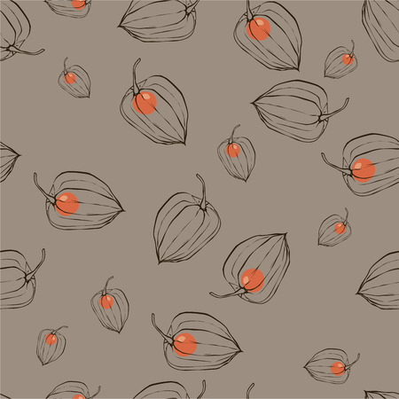 husks: color pattern with fruits Physalis