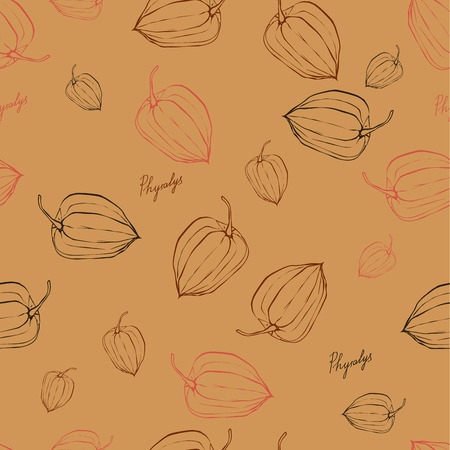 ornage: color pattern with fruits Physalis