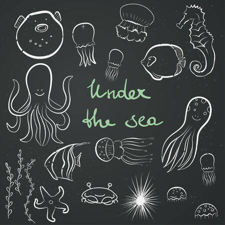 seaweeds: Set of hand drawn sea dwellers. Funny cartoon fish, octopus, jellyfish, starfish, seaweeds, sea hedgehog, sea horse on chalkboard background.