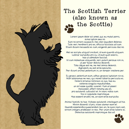 Brochure design with sketch of a sweet standing Scottish terrier, isolated on kraft paper background and space for the text. Hand drawn cartoon dog begging for a treat.