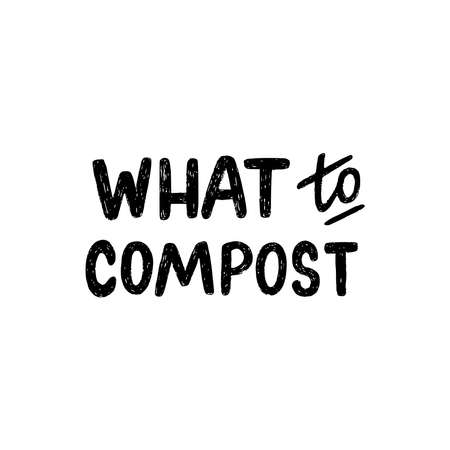 Lettering text What To Compost. Hand drawn message for zero waste education, ecology training, workshop or masterclass about composting. Custom font inscription for headline, cover, poster, title