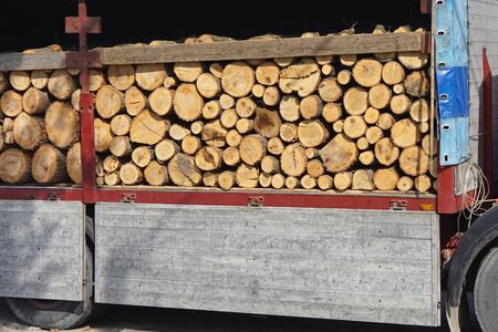 logwood: Logs wood stacked at truck ready for winter
