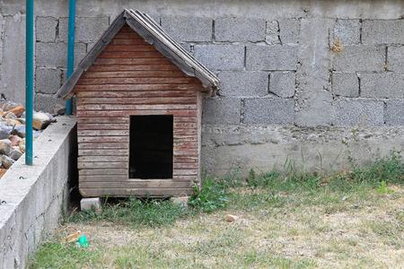 casa de perro: Casa con varias perro arrojar en el jard�n