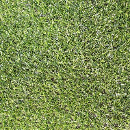 Artificial plastic green grass carpet flooring