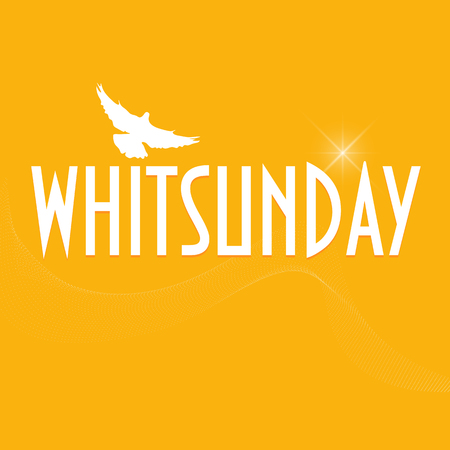 whitsun: Illustration with  a dove silhouette: Christian holiday of Pentecost also known as Whitsun. Illustration